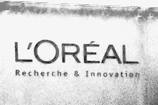 Investments in Asia key to universalization strategy for L'Oréal